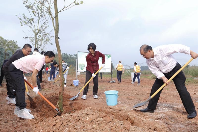 6.植树活动现场.JPG
